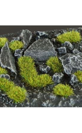 Moss (2mm) Wild