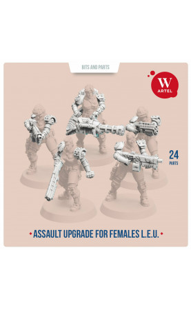 Assault Upgrade Pack for...