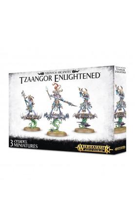 Tzaangor Skyfires / Tzaangor Enlightened