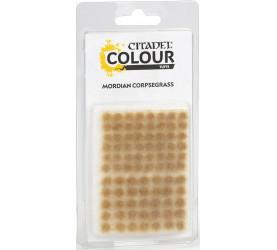 Touffes d'herbe MORDIAN CORPSEGRASS