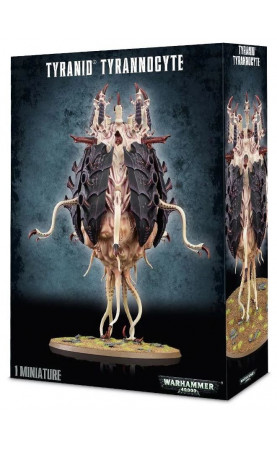Sporocyst et Mucolid Spore / Tyrannocyte
